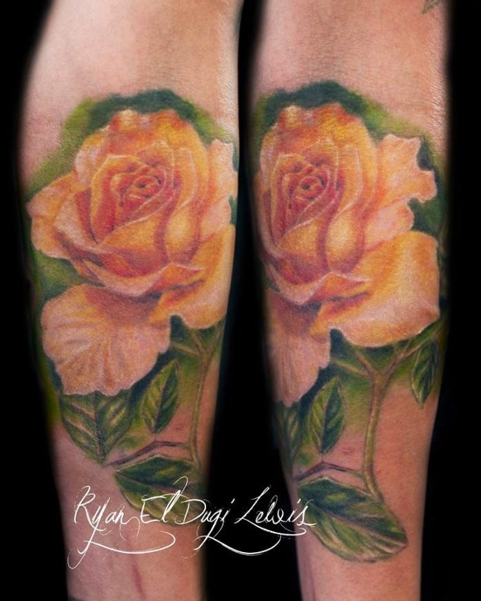 Yellow Rose Healed