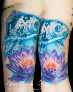 White Blue Koi Lotus