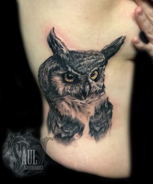 Saul16, saul gutierrez owl in color side piece to be published 8.25.18
